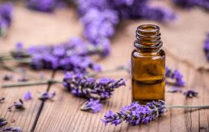 Huile essentielle de lavande pour le soin de la peau